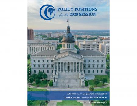 Policy Positions for the 2020 Session
